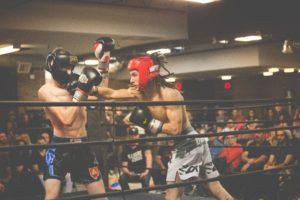 boxeo hobby