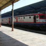 trenes observacion
