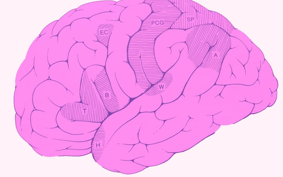 Hobbies en la prevención de demencia y Alzheimer (y parte 3)