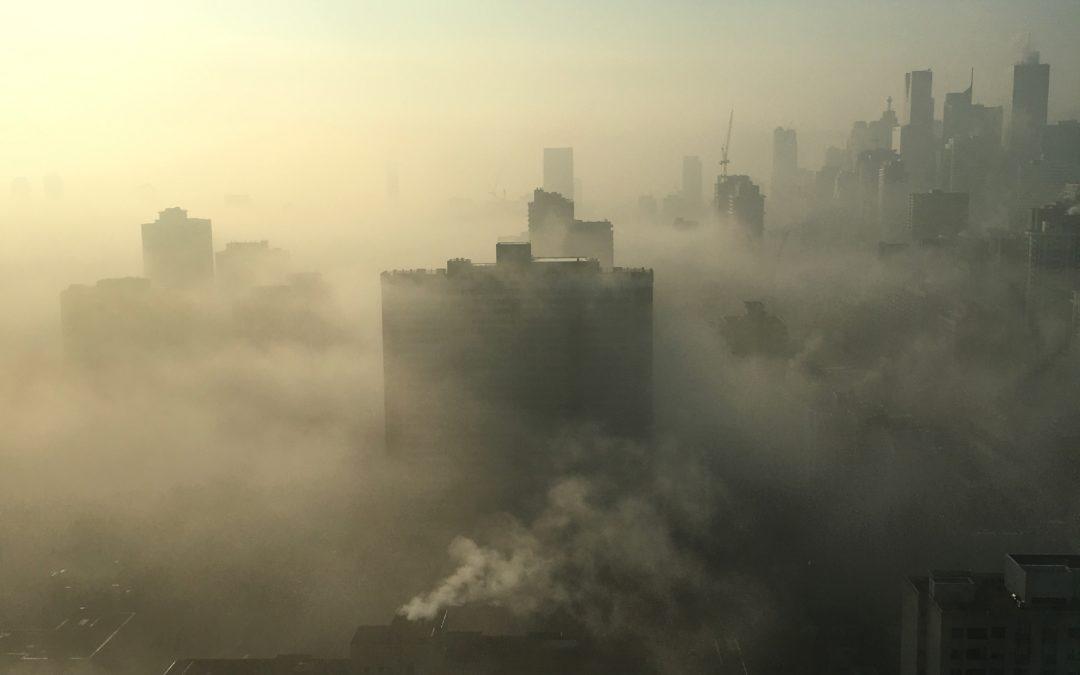 Hobbies y cambio climático